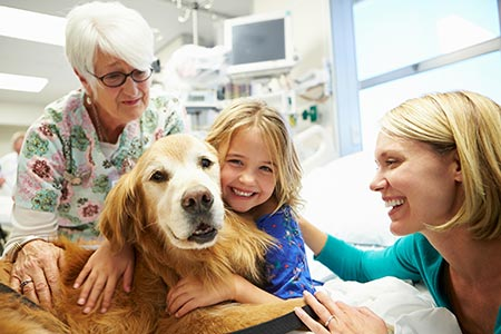 Perioperative Pet Therapy